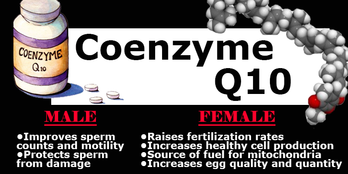 coq10 fertility