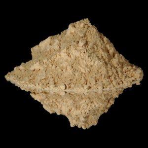 raw maca root powder