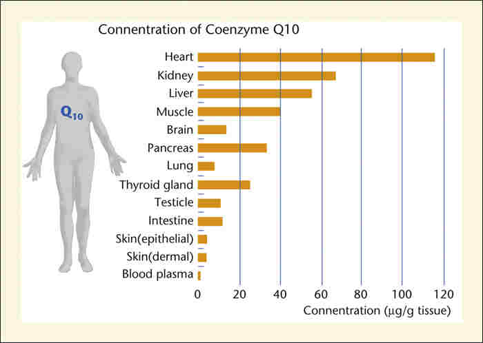 coq10 dose for weight loss