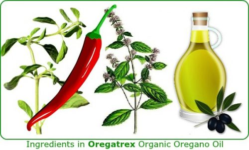 best oil of oregano capsules