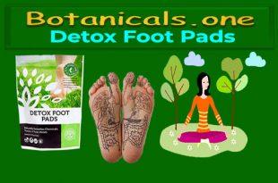 organic detox pads