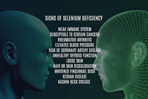 Signs of Selenium Deficiency