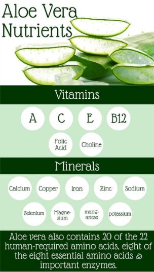 Aloe Vera Nutrients